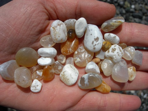 Turtle Island Gifts - Agates found on our beaches.